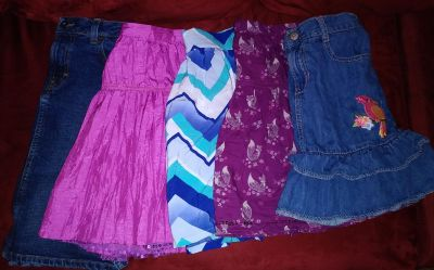 Lot of girls name brand skirts size 10 & 10/12. All fit the same.