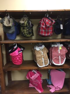 Brand new small dog clothing all 50% off!!!