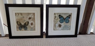 Butterfly Pictures (pair)
