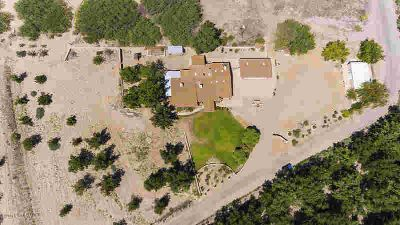 5719 Mauer Road Las Cruces, Rare find, Hobby Farm with Pecan