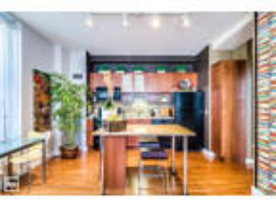 Updated Apartment Home - Loop - Laundry In Unit, Roof Deck, Hot Tub