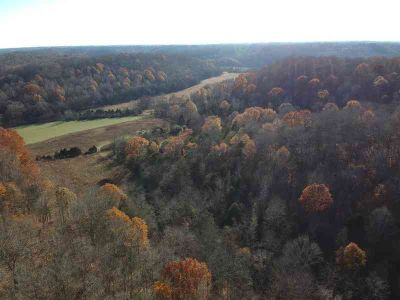 0 Black Rd Minor Hill, Approximately 203 Acres of mixed