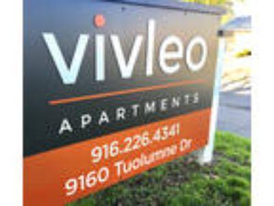 VivLeo Apartments - Two BR