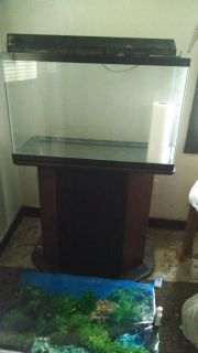 Huge Fish Tank with stand