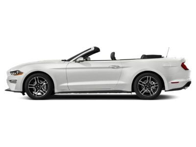 2019 Ford Mustang GT Premium Convertible (Oxford White)