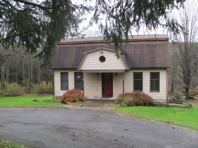 4 Bed 2 Bath Foreclosure Property in Johnson City, NY 13790 - Fredericks Rd