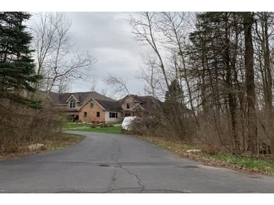Preforeclosure Property in Dimondale, MI 48821 - Rossman Hwy