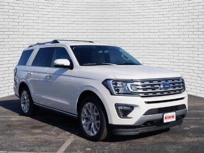 2019 Ford Expedition (White Platinum Metallic Tri-Coat)