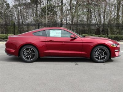 2019 Ford Mustang EcoBoost Premium Fastback (Red)