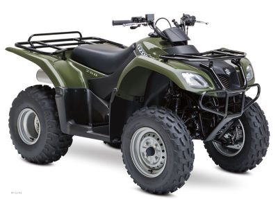 2013 Suzuki Ozark 250 Utility ATVs Pelham, AL