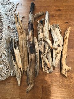 Lot of 10 pieces of driftwood.