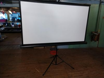 Projection Screen 3' x 5.5'