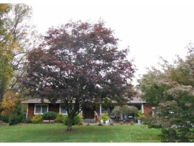 3 Bed 2 Bath Foreclosure Property in Shelton, CT 06484 - Daisy Dr
