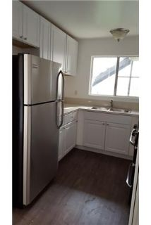 Large Downstairs 1bd, parking, laundry onsite
