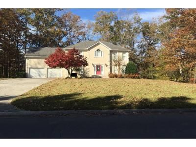 2.5 Bath Preforeclosure Property in Chatsworth, GA 30705 - Blue Springs Dr