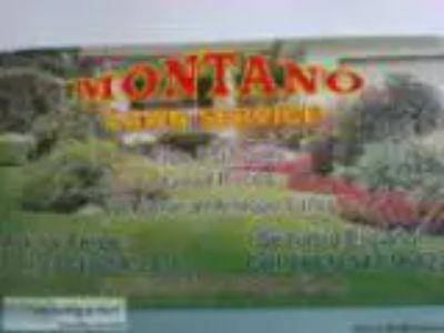 Montano Lawn Service