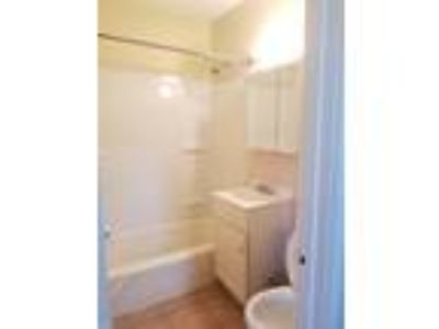Three BR One BA In New Haven CT 06515