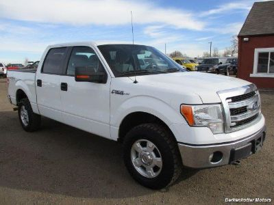 2013 Ford F-150 King Ranch (White)