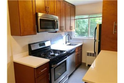 Huge 1 Bed for Rent with Parking!