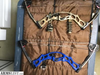 For Sale: Hoyt bows