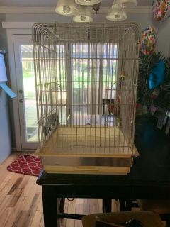 Craigslist - Birds for Adoption Classifieds in Nashville
