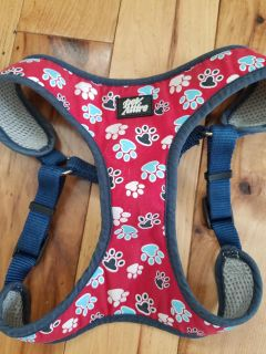 Matching dog harness and leash
