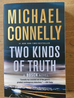 Two Kinds of Truths - novel