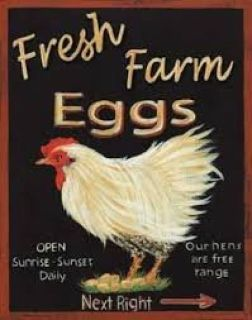 Fresh Farm Eggs Picked Daily