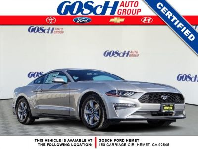 2019 Ford Mustang EcoBoost (Ingot Silver)