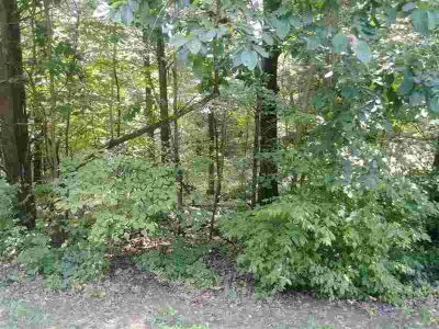 Lot 78 Doe Valley Parkway East Brandenburg