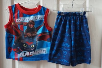 Boys Dreamworks Train Dragon 2-Piece Pajama Set Size 4/5