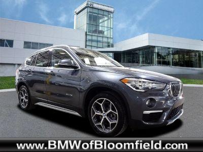 2018 BMW X1 xdrive28i (Mineral Gray Metallic)