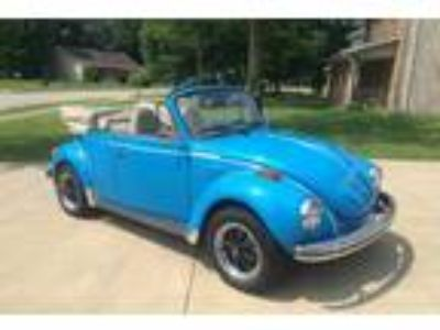 1974 Volkswagen Super Beetle Convertible Bug