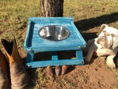 Single Elevated Dog Bowl Feeder