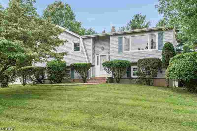 154 Eyland Ave SUCCASUNNA Four BR, What a yard this home has!