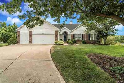 323 Crystal Brook Lake St Louis Four BR, Interested...Write an