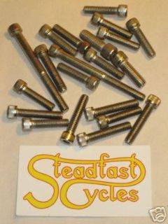 Sell Triumph engine allen head screw bolt set 650 750 1969 to 1979 stainless steel motorcycle in Canyon Country, California, US, for US $21.00