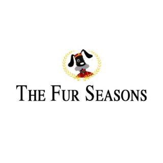 Get The Best Petcare Service In Stuart FL