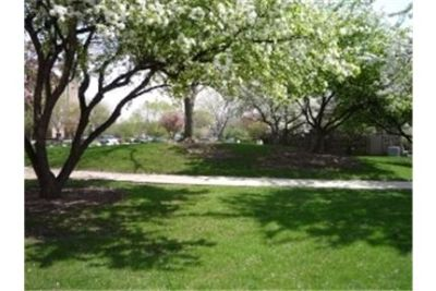 Pull Up A Chair To Comfortable Towers Apartments in Bloomingdale, IL. Pet OK!