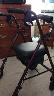Walker with Seat and Storage