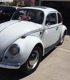 Clean original 1965 sunroof bug