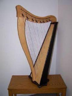$750 Dusty Strings 26-string beginner folk harp