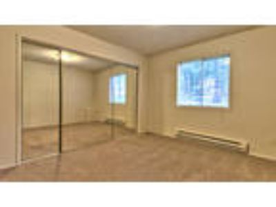 Arbor Pointe Apartments - Two BR Two BA (E)