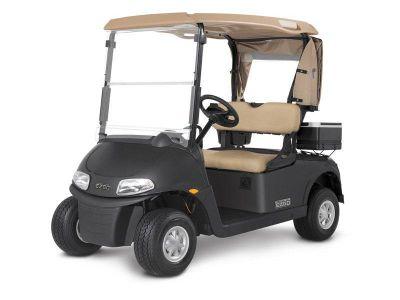 2019 E-Z-Go Freedom RXV Electric Golf Golf Carts Jasper, GA