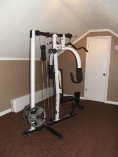 Complete Weider Butterfly Set