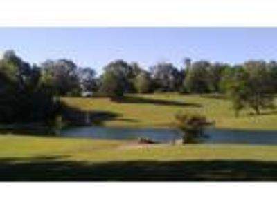 LOCATION! ~42 acre Private estate: 3B 3b home, 1B 1b guest cottage, 2 acre lake