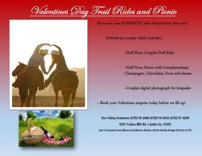 Romantic Horse Trail Rides~ Champagne, Chocolates,Wine, Cheese, and fruit!