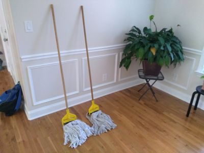 Commercial mops