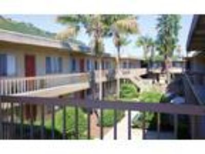 Coronel Place Apartments - Three BR, Two BA