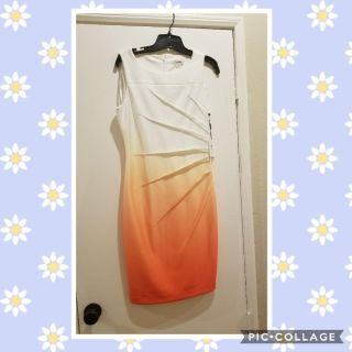 Calvin Klein Spring Size 8 Dress
